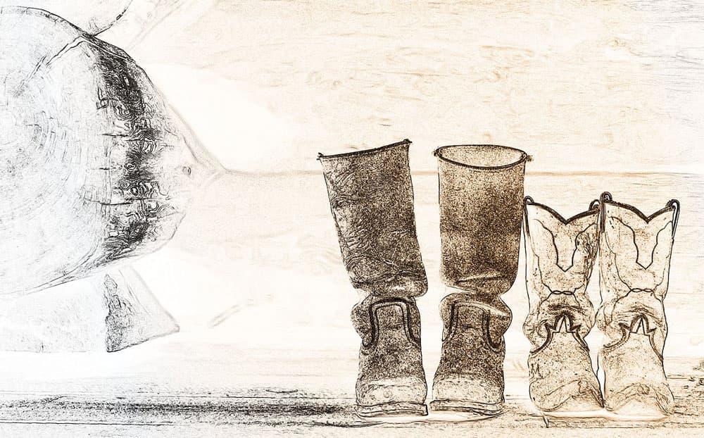 botine dama cowboy